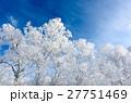 青空と樹氷 27751469