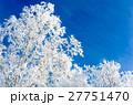 青空と樹氷 27751470