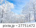 青空と樹氷 27751472