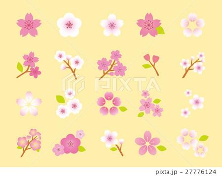 桜 イラスト集のイラスト素材 27776124 Pixta