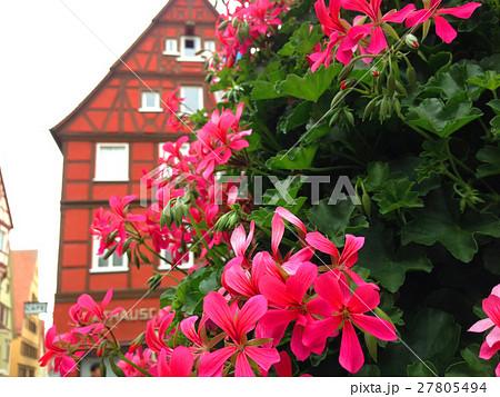 ドイツ ローテンブルク 街並み ピンクの花 27805494