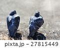 鳩 ハト 野鳥の写真 27815449