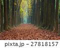 秋 あき 秋のの写真 27818157