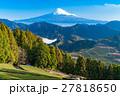 【静岡県】富士山と茶畑 27818650