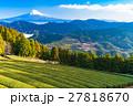 富士山 富士 畑の写真 27818670