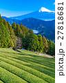 富士山 富士 畑の写真 27818681