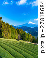 富士山 富士 畑の写真 27818684