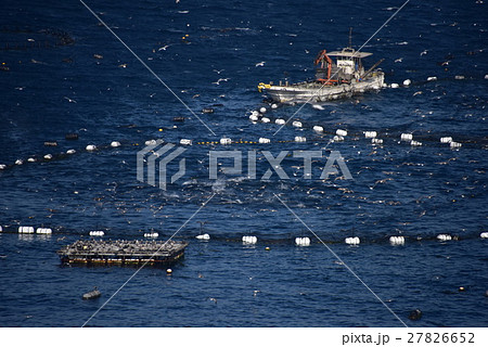 高知柏島のマグロの養殖イケス 27826652
