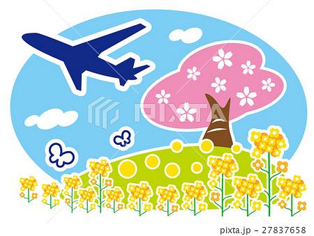 桜と菜の花と飛行機のイラスト素材 [27837658] - PIXTA