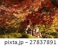 紅葉を満喫する日本人女性と外国人女性 27837891