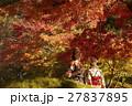 紅葉を満喫する日本人女性と外国人女性 27837895