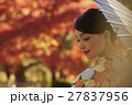 鮮やかな紅葉と着物の女性 ポートレート 27837956