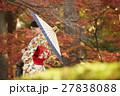 鮮やかな紅葉と着物の女性 ポートレート 27838088