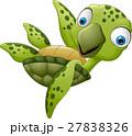 かめ カメ 亀のイラスト 27838326