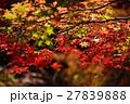京都勝持寺の秋 27839888