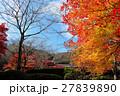 京都勝持寺の秋 27839890
