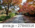 京都養源院の秋 27840316
