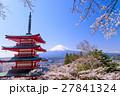 桜咲く新倉山浅間公園、忠霊塔と富士山 27841324
