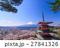 桜咲く新倉山浅間公園、忠霊塔と富士山 27841326