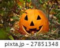 Halloween pumpkin on fallen autumn leaves 27851348