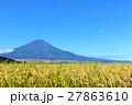 富士山と秋の田んぼ風景 27863610