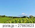 青空の富士山と新緑の茶畑 27863623