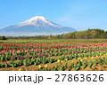 富士山 山 花の写真 27863626