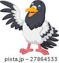 Cute Pigeon bird waving 27864533