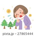 花粉 花粉症 アレルギーのイラスト 27865444