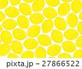 レモン 柄 模様のイラスト 27866522