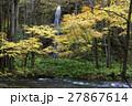 10月 紅葉の奥入瀬渓流 東北の秋  27867614