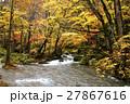 10月 紅葉の奥入瀬渓流 東北の秋  27867616