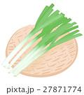 ねぎ <お野菜とざる> 27871774