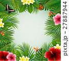 背景 蝶 フラワーのイラスト 27887944
