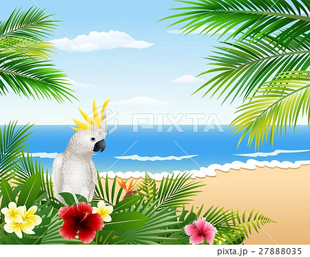Card with tropical beach, tropical plants and parrのイラスト素材 [27888035] - PIXTA