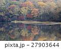 鏡池 戸隠高原 紅葉の写真 27903644