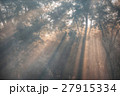 Chitwan National Park 27915334