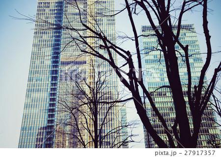 東京、丸の内、冬の街路樹 27917357