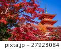 京都 清水寺の紅葉 27923084