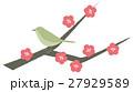 梅 紅梅 春のイラスト 27929589