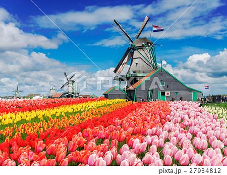 Dutch wind mills 27934812