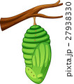 Cartoon pupa of the butterfly 27938330