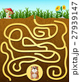 Help the groundhog to find way out 27939147