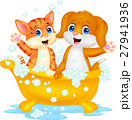 Cute cat and dog bathing time 27941936