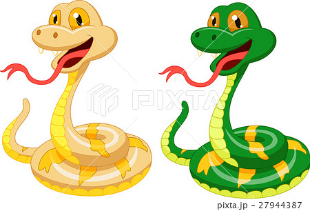 Cute snake cartoon 27944387