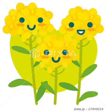 菜の花の親子(緑) 27949224