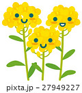 菜の花 親子 春のイラスト 27949227