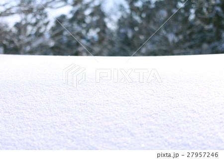 雪原 27957246