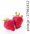 いちご イチゴ 苺の写真 27961612