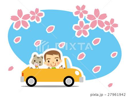 桜吹雪 猫とドライブを楽しむ男性 27961942